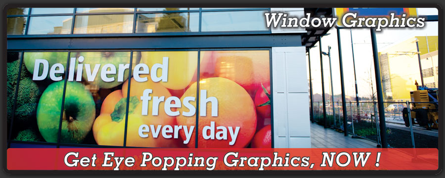 window-graphics-banner